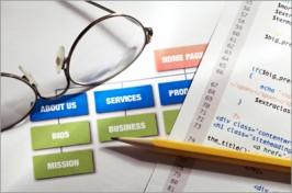Website Planning and Design